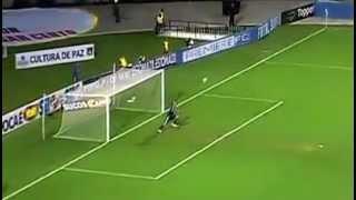 O Gol mais Bonito do Mundo é do Palmeiras !
