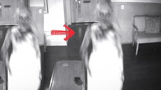 5 Penampakan hantu & kejadian mengerikan yang berhasil terekam cctv