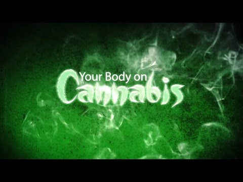 Your Body on Cannabis (New Documentary)