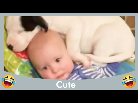 Funnest Baby Playing With Animals