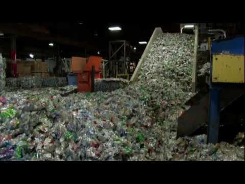 Environmental Impact of Plastic Water Bottles