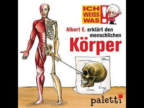 IchWeissWas! Albert E. erklärt den menschlichen Körper - YouTube
