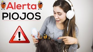 Video Removing lice from your head, while I comb your hair | Spanish Asmr download MP3, 3GP, MP4, WEBM, AVI, FLV November 2018