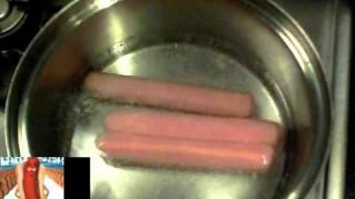 HOT DOG NEW SONG SPANISH VERSION.wmv