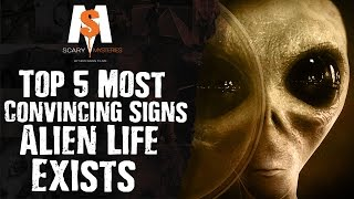 Top 5 Most CONVINCING SIGNS That ALIEN Life Exists