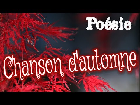French poem 🍁 Chanson d'automne de Paul Verlaine 🍁