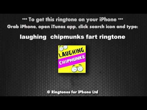 Laughing Chipmunks Ringtone