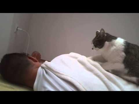 Dzsepi massage