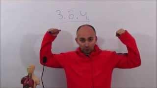 Парадоксальные вероятность - закон больших чисел 1