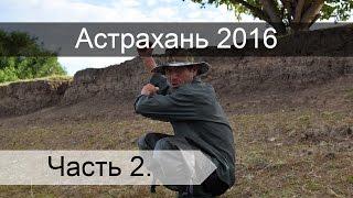 Рыбалка в Астрахани на реке Бушма. Часть 2.(Ловим рыбу на реке Бушма в Астрахани. В основном ловился сазан. Когда делать было нечего, ловили тарань и..., 2016-10-02T16:25:57.000Z)
