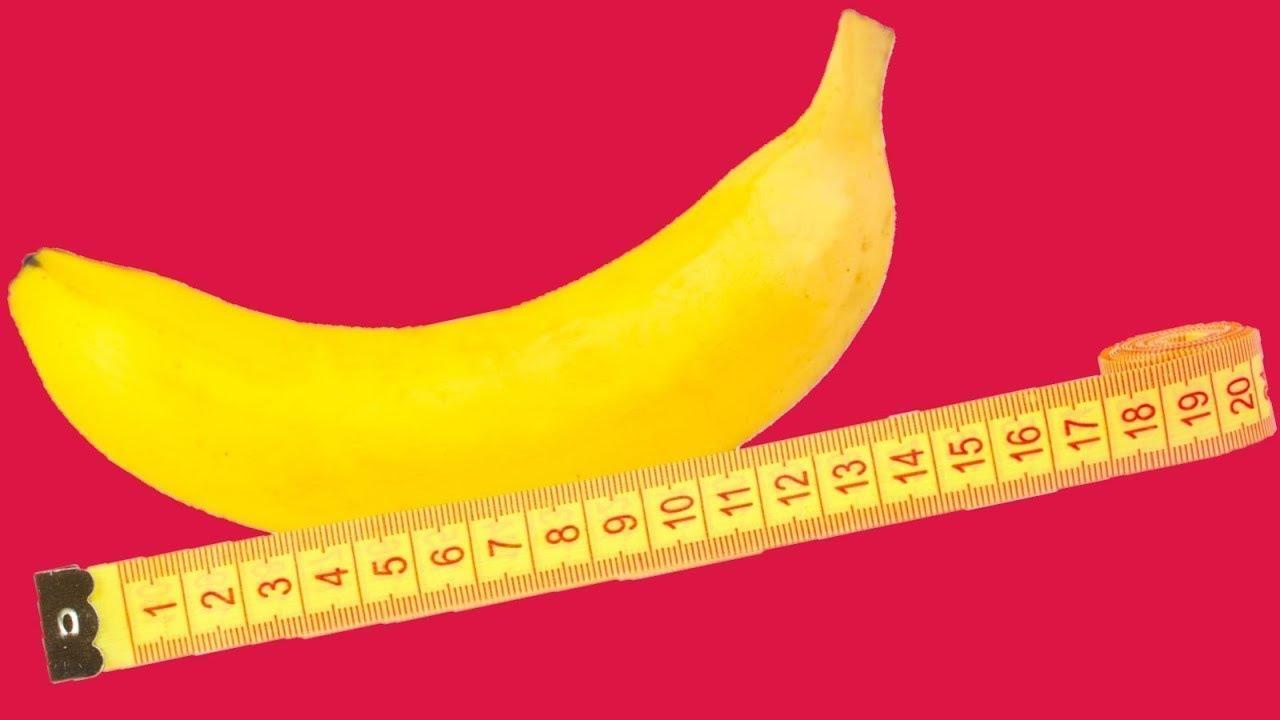 Размер члена и вагина