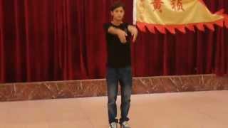 Video Huang Zhen Wing Chun demostration in China download MP3, 3GP, MP4, WEBM, AVI, FLV November 2017