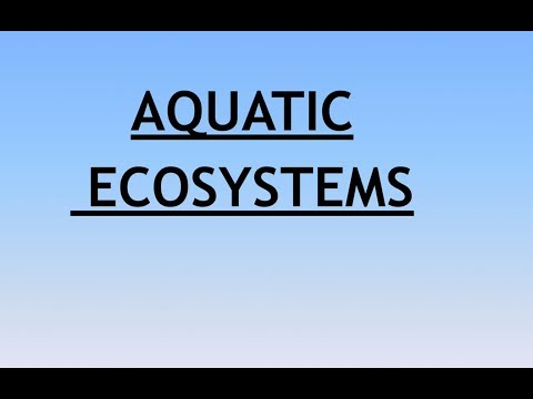 Environment and Ecology Lecture 4 - Aquatic Ecosystems