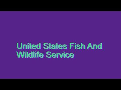How to Pronounce United States Fish And Wildlife Service