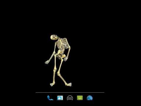 Skeleton Live WallPaper - YouTube