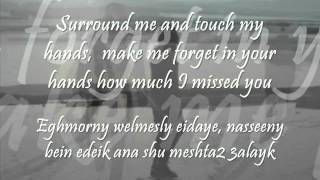 Bhebak ana Ktir - Wael Kfoury  *Lyrics and english translation*
