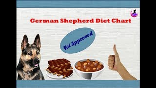 German Shepherd Diet Chart- Vet Approved