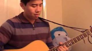 Red Hot Chili Peppers - Can't Stop (acoustic cover)