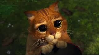 Shrek Puss In Boots- All cute eye39s scene39s  - YouTube