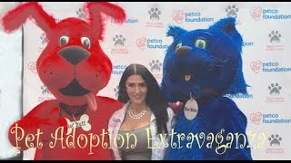 Adoptapalooza - Adopt a Little New Yorker Today!