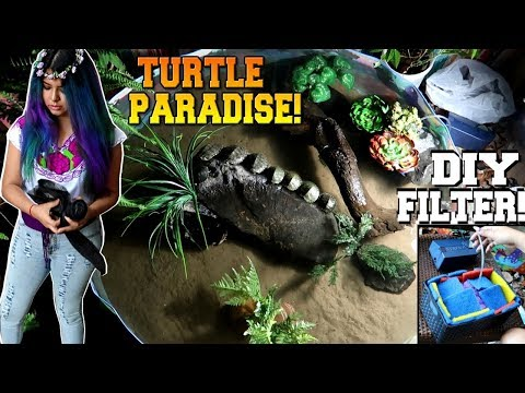 kiddie pool for baby turtles FULL BUILD for ALL turtle owners!  (#prayformexico)