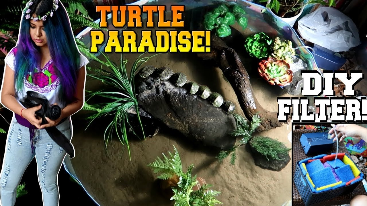 kiddie-pool-for-baby-turtles-full-build-for-all-turtle-owners-prayformexico