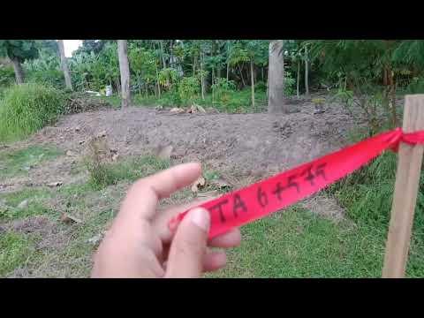 Patok Patok Tol Solo-Jogja-Bandara Baru di Gamping (1)