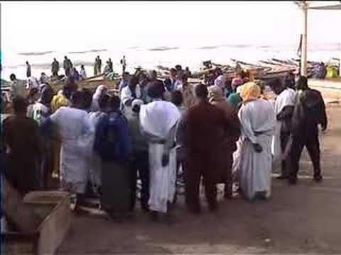 The fishermen of Nouakchott (Mauritania)