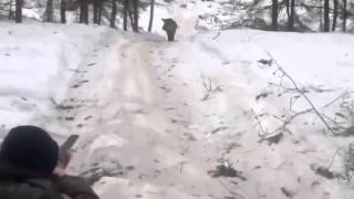 ПРИКОЛ  НЕМНОЖКО ПРОМАХНУЛСЯ на охоте Смешное видео HD