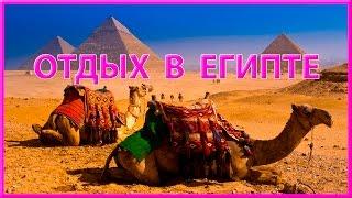 Египет - Каир, Люксор... МИР ПУТЕШЕСТВИЙ от ROSMAIT PRESENTS(Сегодня мы отправимся в путешествие по Египту, побываем в гостях у Бедуинов, совершим сафари по пустыне..., 2016-01-14T22:53:17.000Z)