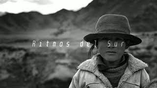La Cosecha 👩🌾 |Mix| Nicola Cruz ▪ Matanza ▪ El Búho ▪ Barrio Lindo ▪ Acid Pauli