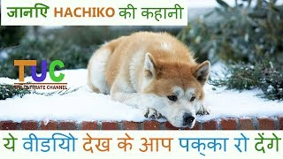 Hachiko The Akita Dog story In hindi   Popular Dogs Stories   The Ultimate Channel