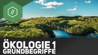 Grundbegriffe der Ökologie - Ökologie 1 ● Gehe auf SIMPLECLUB.DE/GO & werde #EinserSchüler