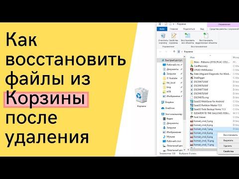 Как быстро и бесплатно восстановить файлы после случайной очистки Корзины под Windows 7, 8, 10)