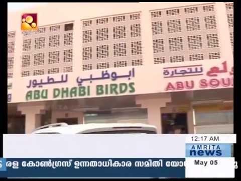 Amrita special : Pets Market Abudhabi