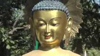 Lord Buddha | In Sayanbhunath Monastery | Kathmandu, Nepal - HD