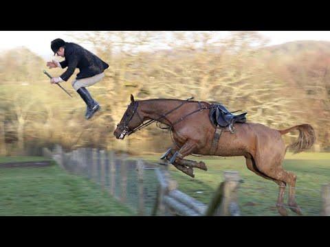 Download BEST HORSE FAILS OF 2019! *lots of falls