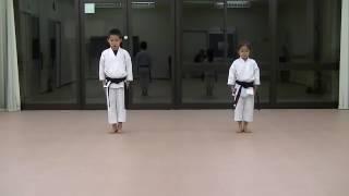 Karate kata yellow belt to brown belt