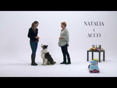 Akademia Był sobie pies - Natalia i Acco (premiera filmu: 17.02.2017)