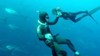 Freediving Malta Gozo Comino Tuna Farm September 2016 GoPro