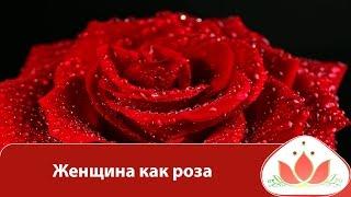 Маргарита Мураховская - Женщина как роза