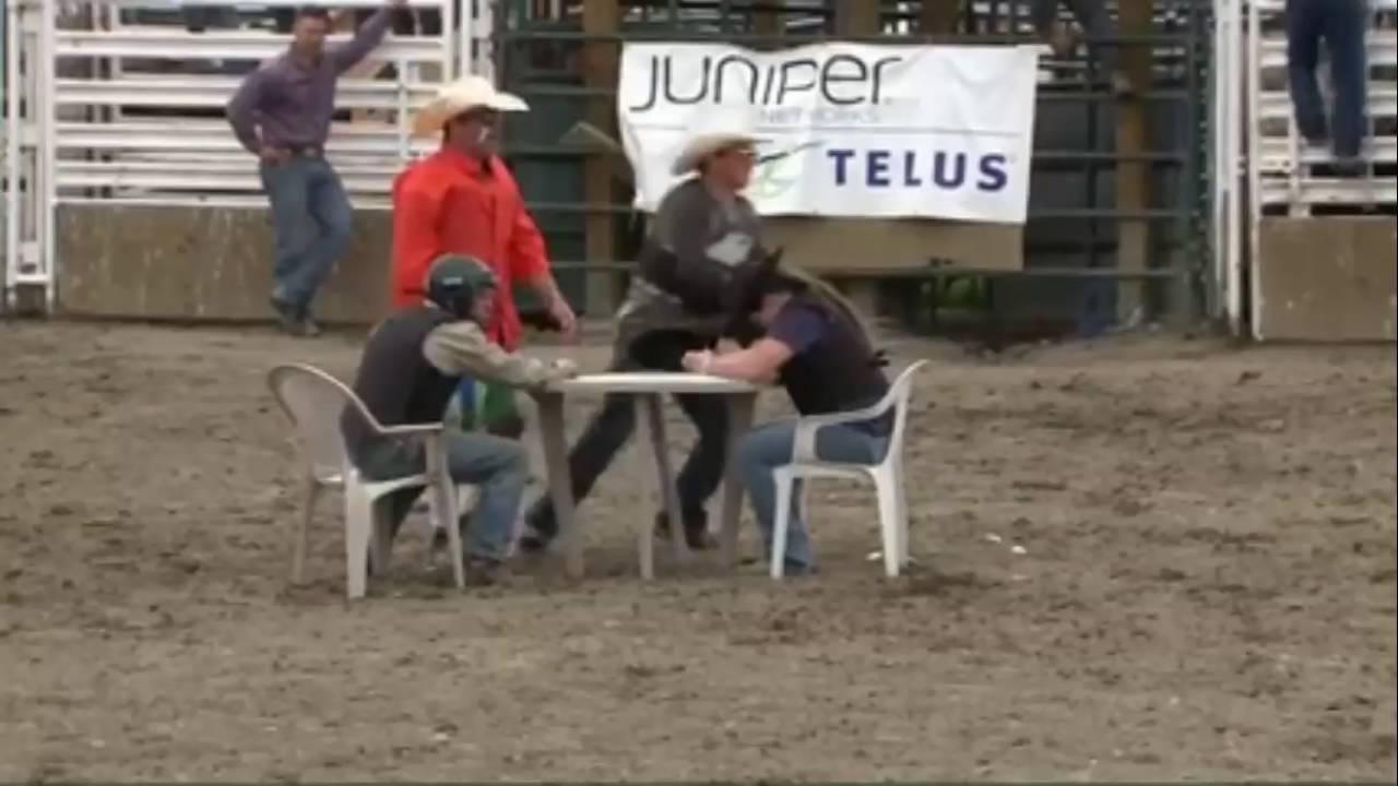 Calgary police rodeo bull poker pechanga casino poker room reviews