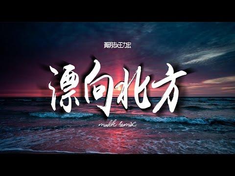 黃明志Namewee feat. 王力宏 Leehom Wang【漂向北方 Stranger In The North 】(MAD K Remix)