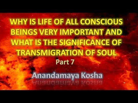 Anandamaya Kosha; Importance of life of conscious beings (PART 7)
