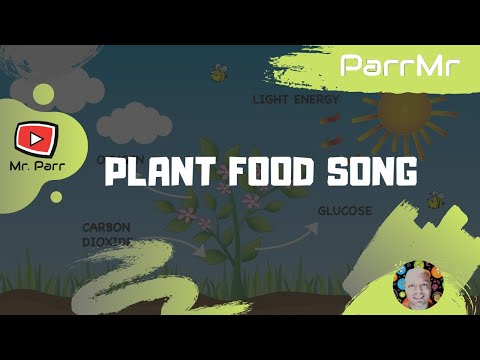 Plant Food Song