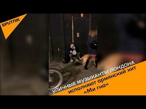 Уличные музыканты исполняют армянский хит «Ми гна» в Лондоне
