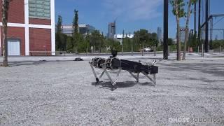 Fence Climbing Robot - Ghost Minitaur Intro