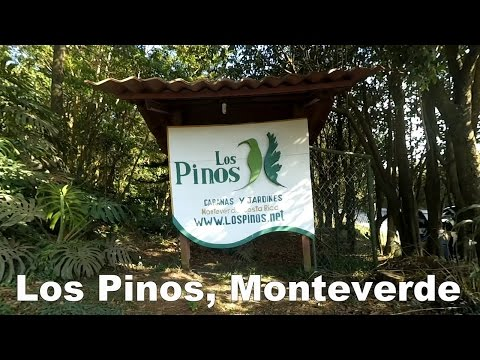 Hotel Tour of Los Pinos, Monteverde, Costa Rica