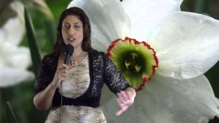 Libra April 2014 Monthly Astrology Horoscopes by Nadiya Shah