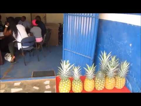Doing business in Africa: Diaspora meets Ghanaian partners